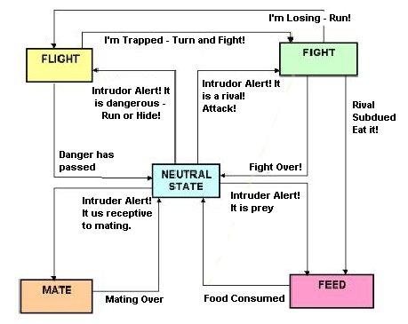 Cat Fight or Flight Diagram