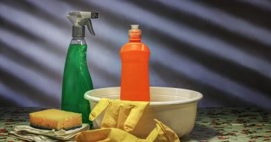 5 Hidden Household Toxins That Could Be Dangerous for Your Pets