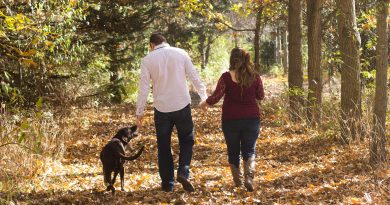 5 Tips for a Safe and Happy Autumn with Your Pets