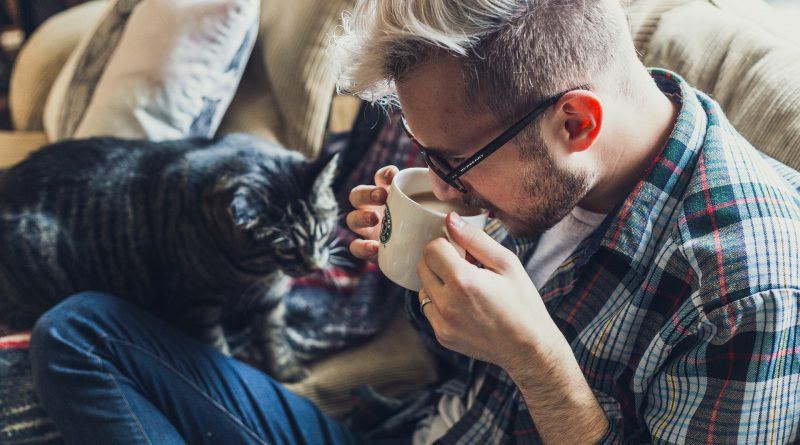 Three Simple Steps for Correcting Your Cat's Bad Behavior